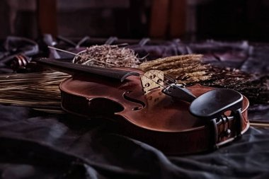 The wooden violin put beside dried flower,on grunge surface background,vintage and art tone,classic style,blurry light around