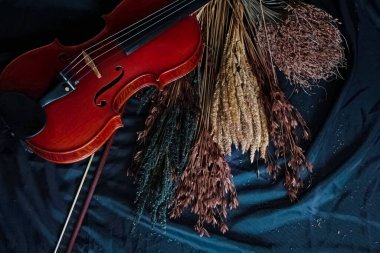 Group of dried flower put beside wooden violin, on grunge surface background,vintage and art tone,classic style,blurry light around