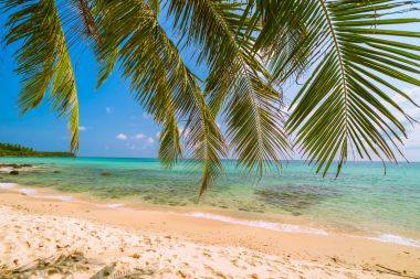 Beautiful paradise island with sea and beach landscape around coconut palm tree - Holiday vacation concept
