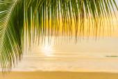 Gyönyörű tengeri óceán strand pálmafa napfelkeltekor ideje hol