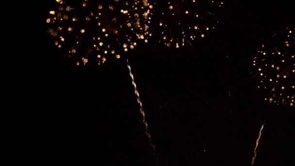 Krásný barevný ohňostroj displej v noci k oslavě výročí