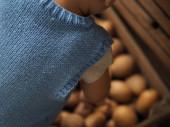 Dítě si vybírá brambory na trhu k radosti rodičů