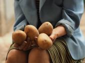 Starší žena drží v rukou agrobramboru.