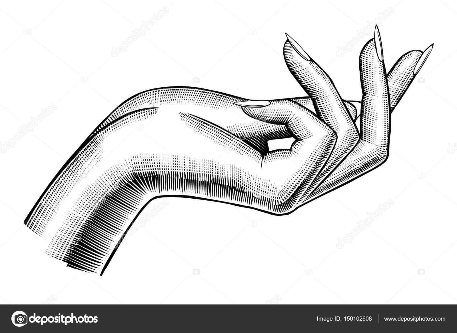 Annata di mano della donna disegno vettoriali stock - Main en dessin ...