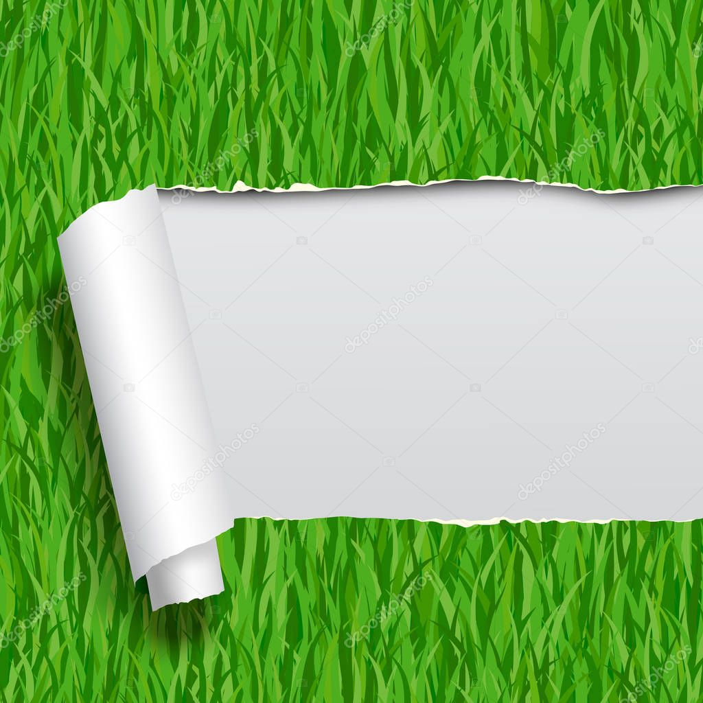 Ripped paper with green grass seamless pattern background