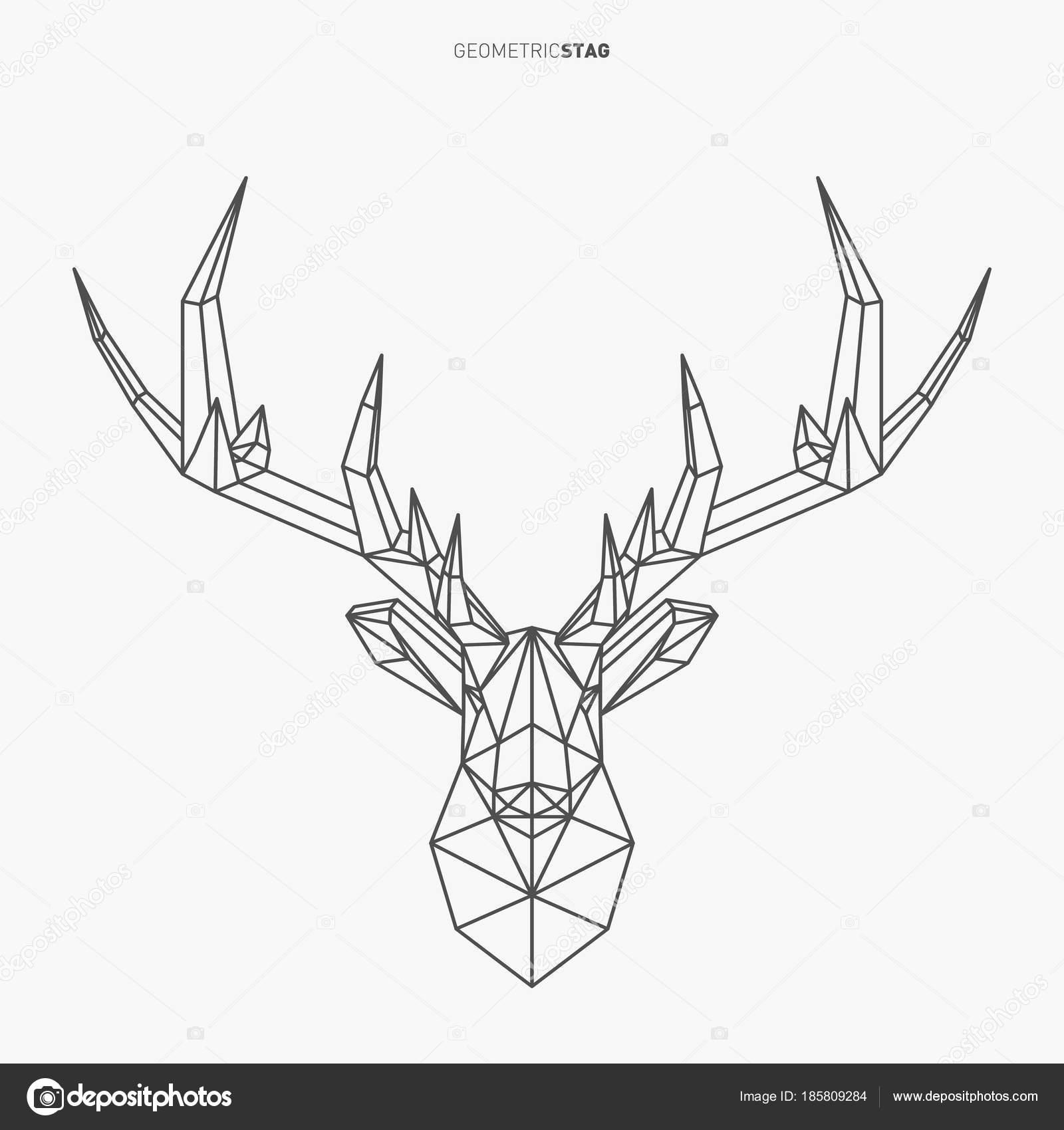 Stag Geometrique Image Vectorielle Kundra C 185809284