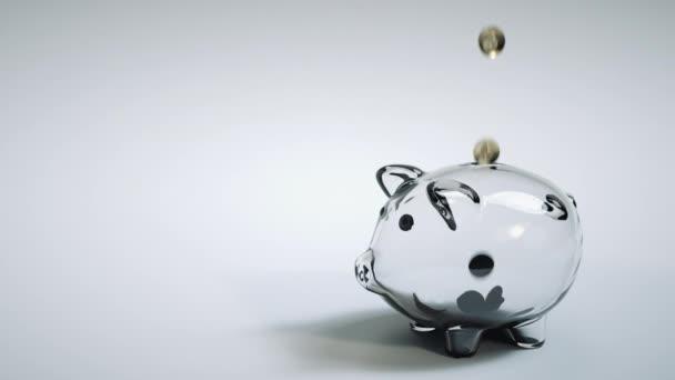 Průhledná prasátko banka s mincemi