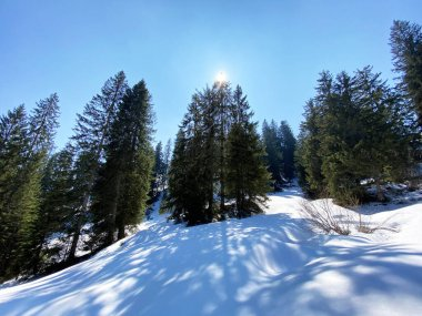 The early spring atmosphere and the last remnants of winter in the Alptal alpine valley, Einsiedeln - Canton of Schwyz, Switzerland (Schweiz)