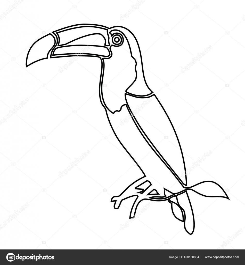 Tucán. Ilustración del vector para colorear libro — Vector de stock ...