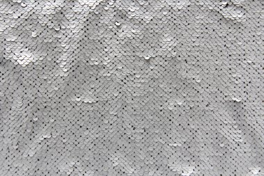 Silver Scales Texture
