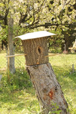 Natural wooden bird house