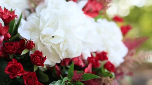 Hydrangea Květiny v květináči. Svatební dekorace v Černé hoře