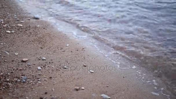 Oblázky na pláži. Textura mořského pobřeží. Jaderské moře
