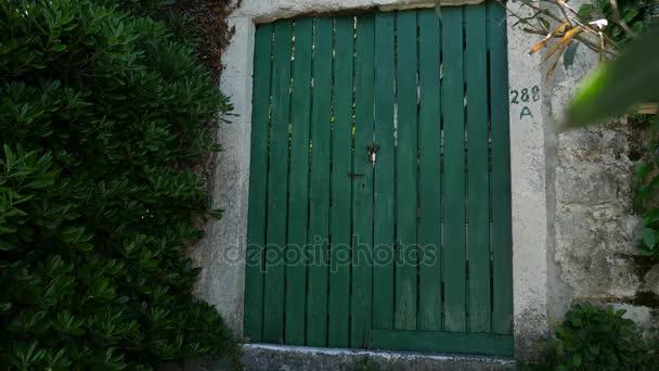 Zelené dveře. Texturu dřeva. Staré omšelé, ozářené barva