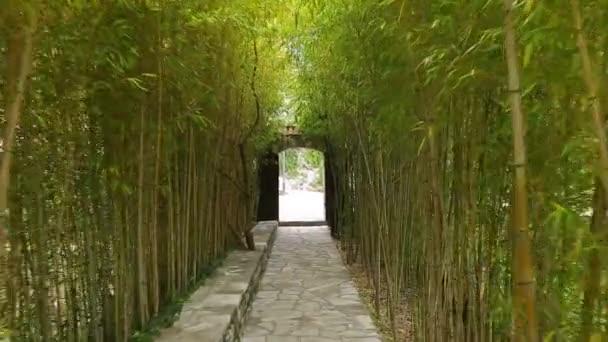 Bambusz Grove Park
