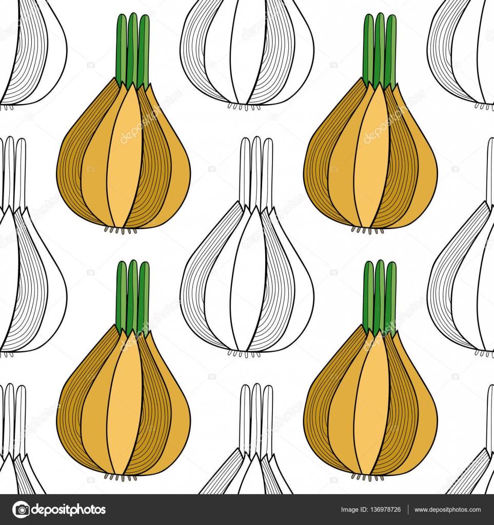 Negro, blanco de patrones sin fisuras con cebollas para colorear ...