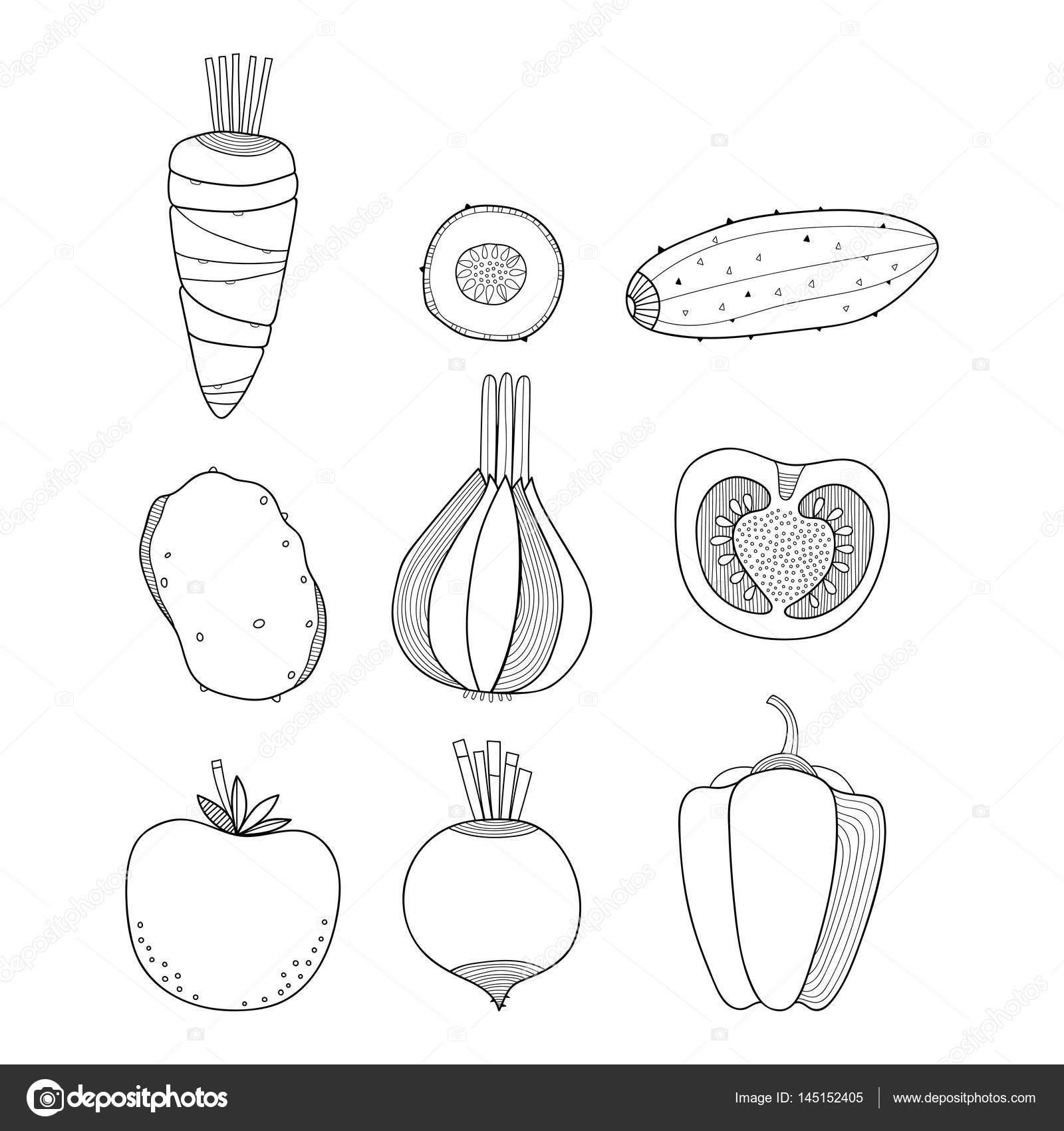 Sebze Doğrusal Illustration Havuç Salatalık Patates Soğan Boyama