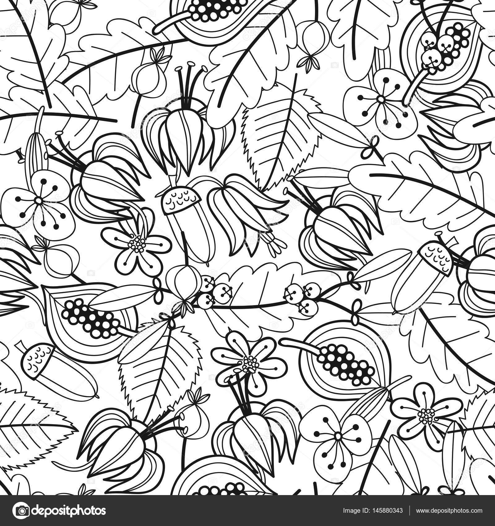 Patrón transparente blanco y negro con flores, hojas para colorear ...
