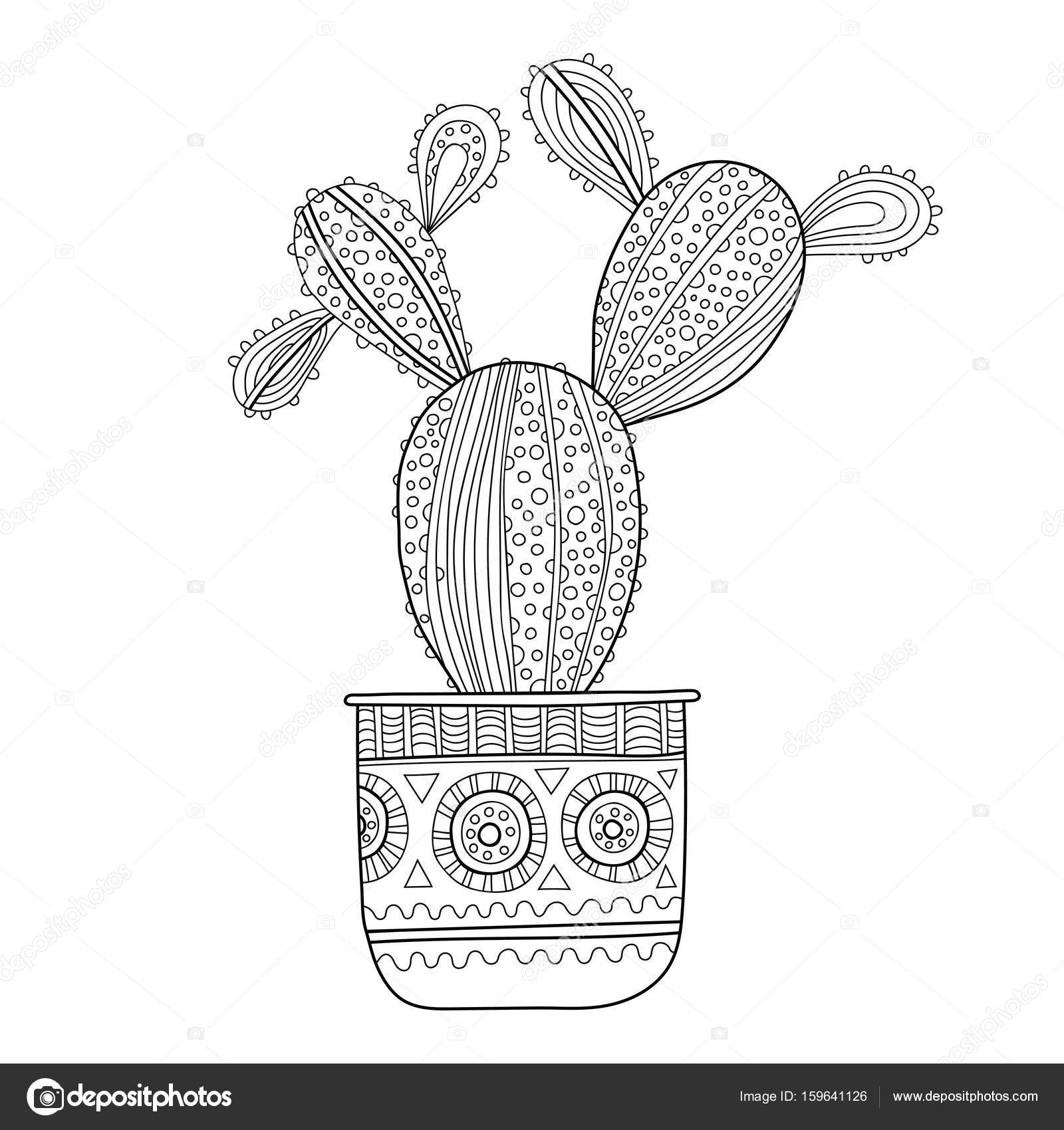 Cactus, succulent. Black and white illustration for coloring books ...