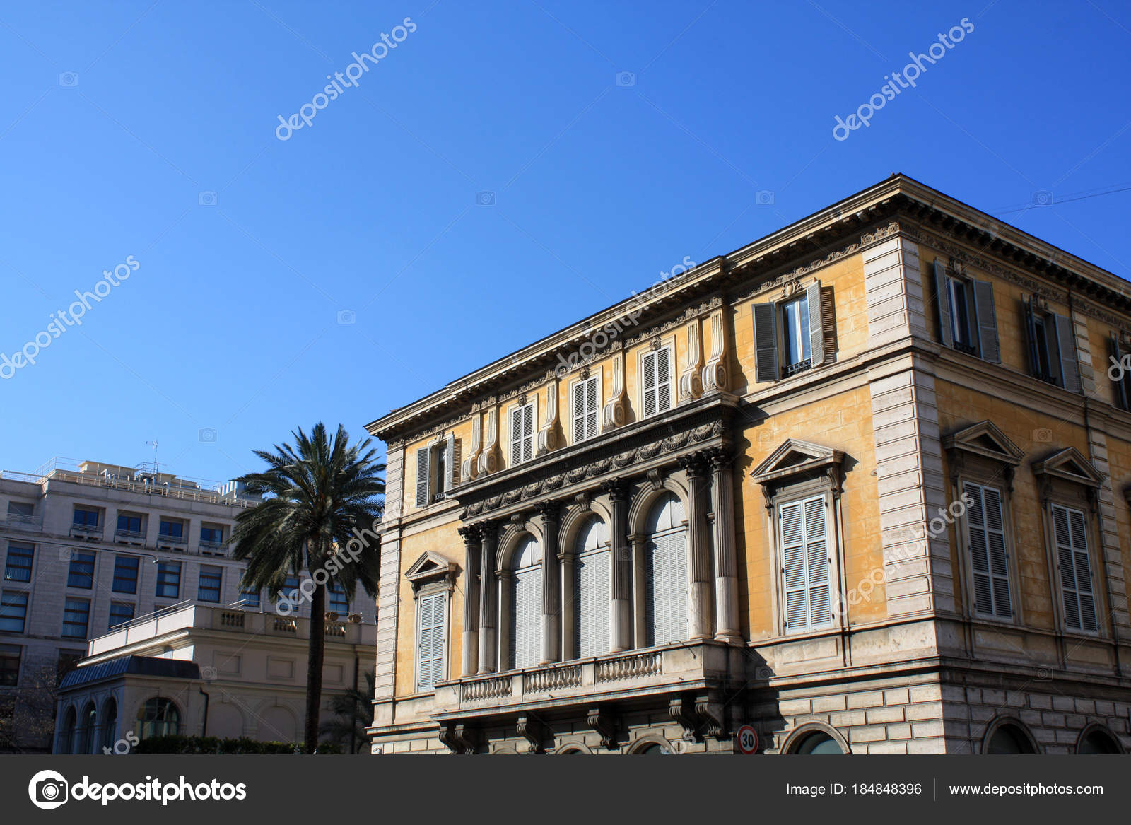 Palm with building. Italy. Rom. Sunny day stock photo image of.