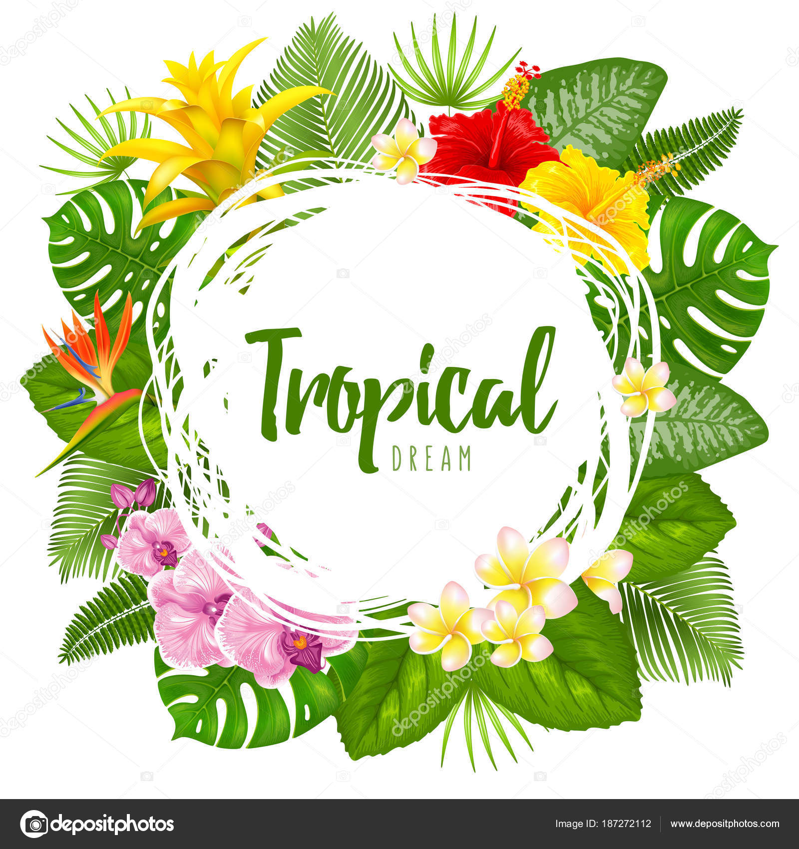 Summer tropical frame design — Stock Vector © Pazhyna #187272112