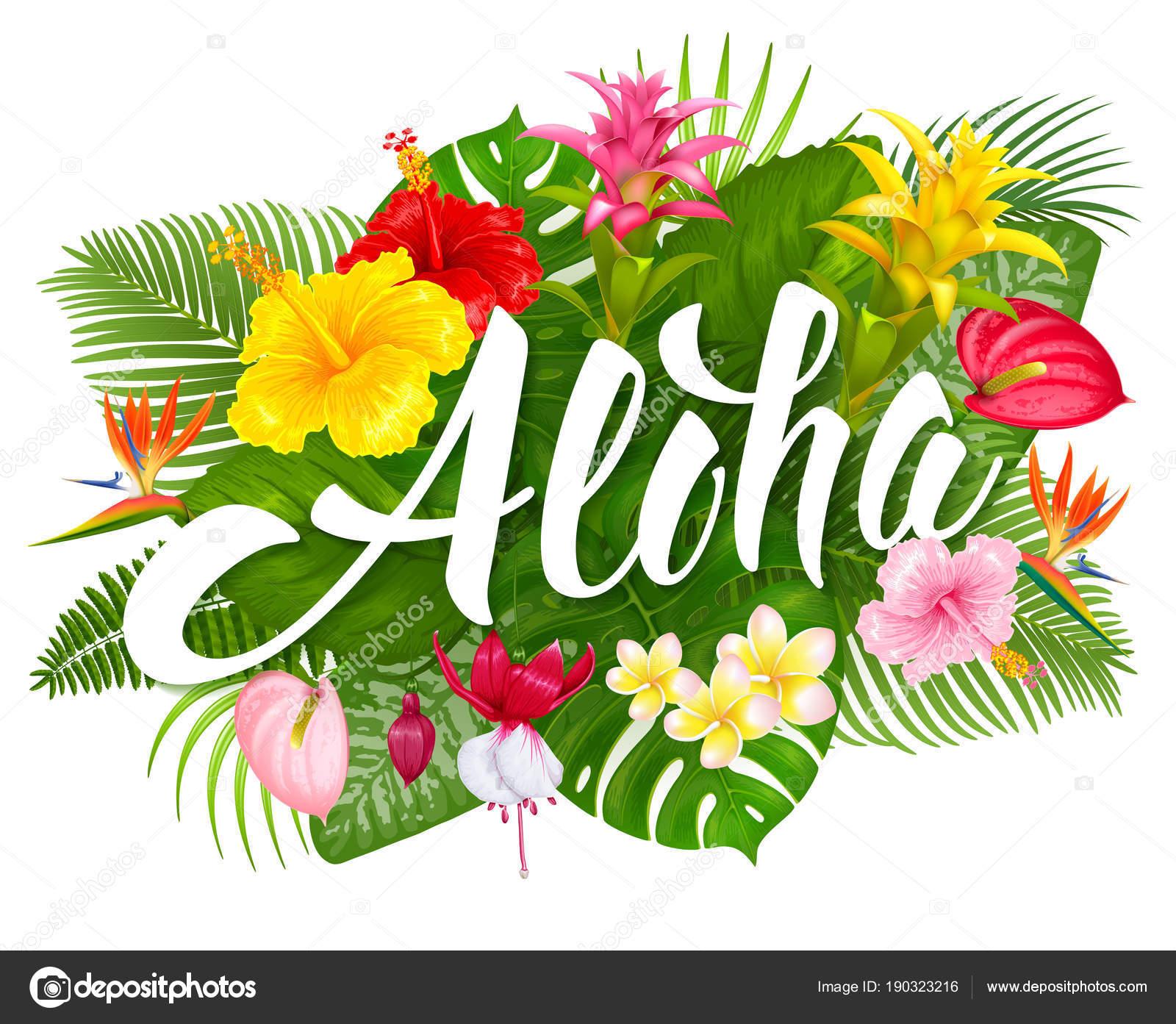 Aloha Hawaii lettering and tro...