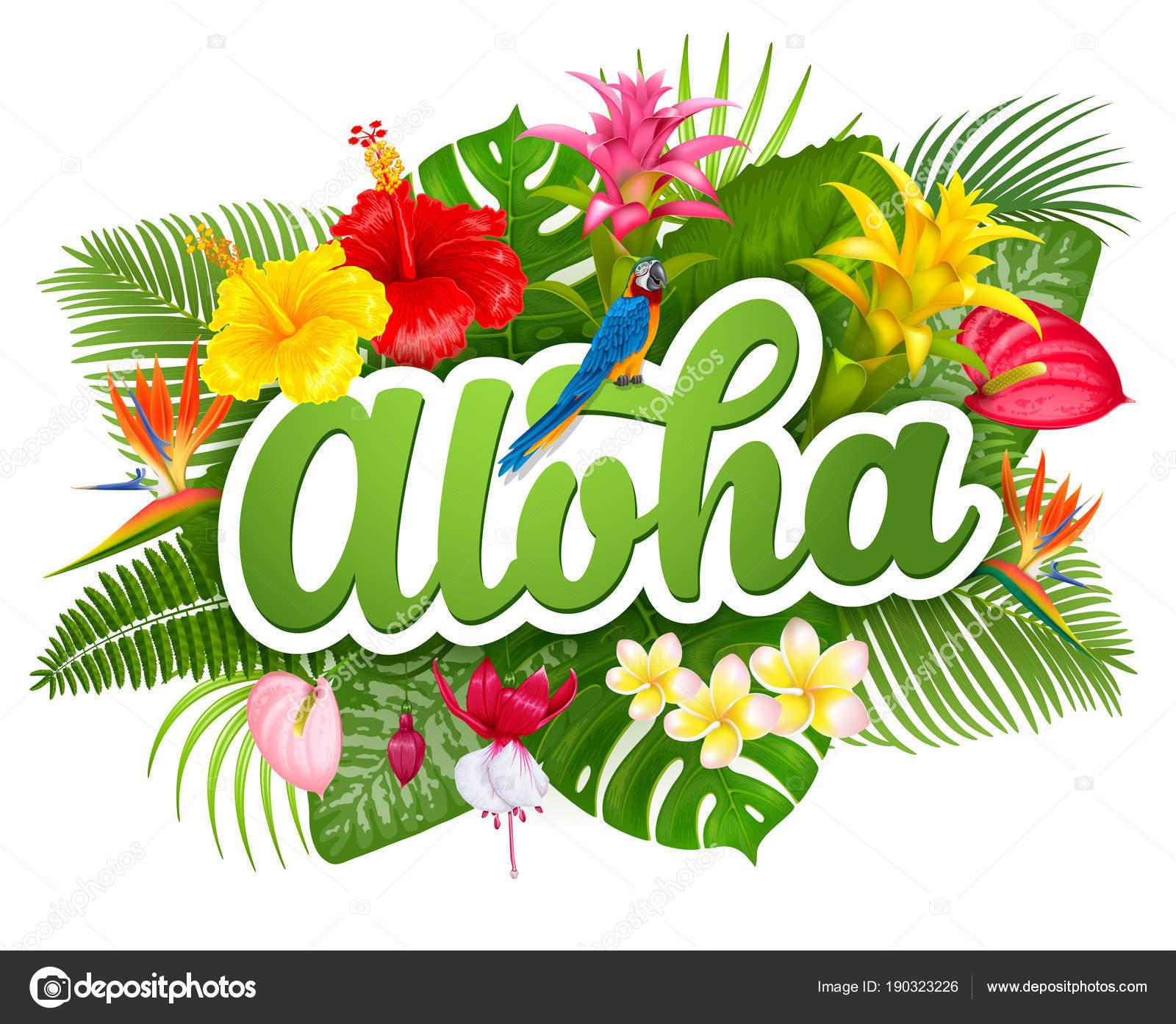アロハ ハワイ レタリングや熱帯...