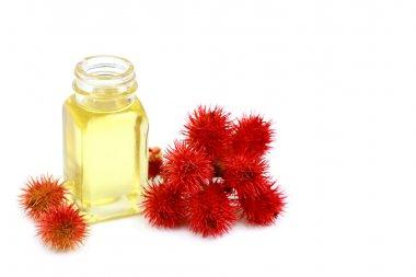 Curative castor oil