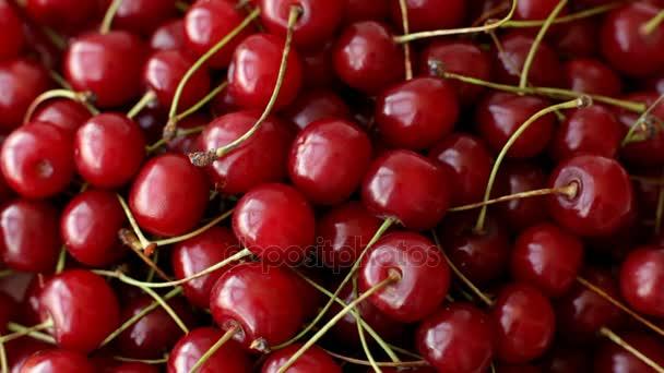 Pohled shora zralé třešně ovoce