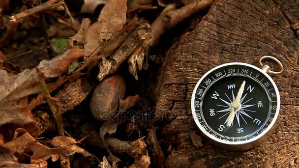 Navigation compass lies on the stump in sunlight