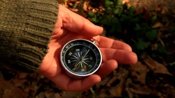 Navigation compass in hand of girl part 2