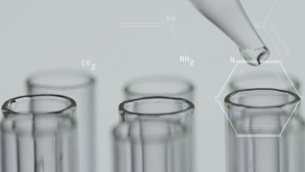 Nahaufnahme eines Laboranten, der mit einer Pipette arbeitet, analysiert und extrahiert die DNA oder Moleküle in den Teströhren. Auf weißem Hintergrund mit virtueller Schnittstelle