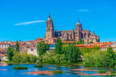 Cathedral at Salamanca reflected on river Tormes, Spain