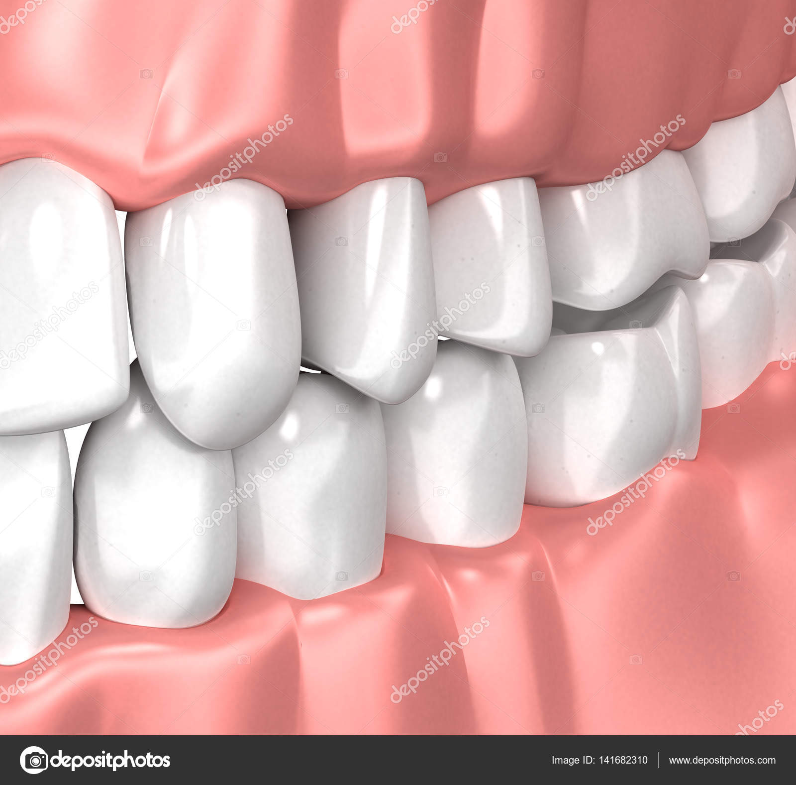 Teeth Gum Human Mouth Anatomy - 3d illustration — Stock Photo ...