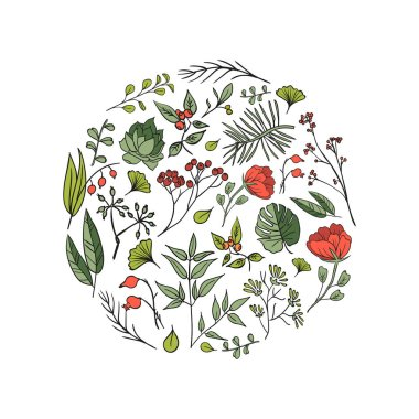 set of plants and herbs icons