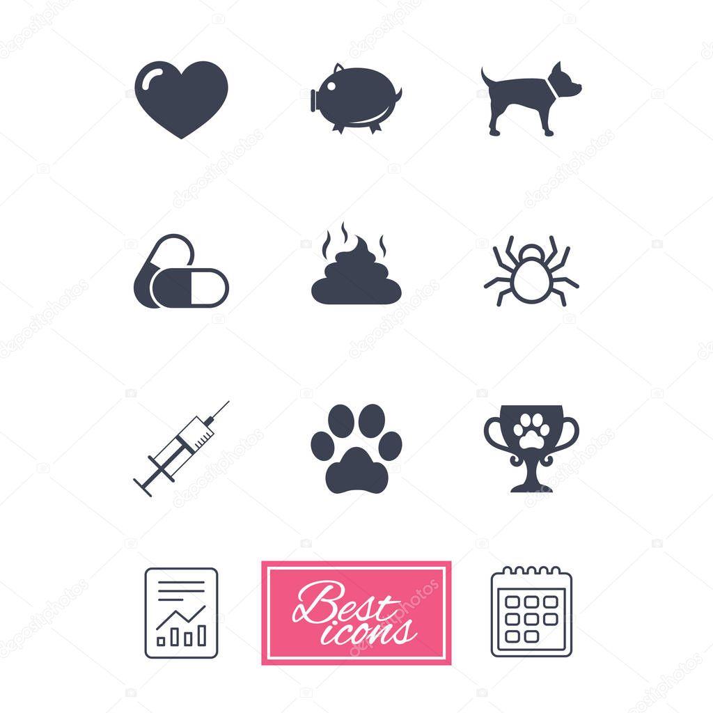 Tiermedizin, Haustiere-Symbole — Stockvektor © Blankstock #129313360