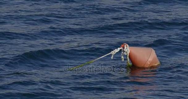 Bóje, plovoucí na moři