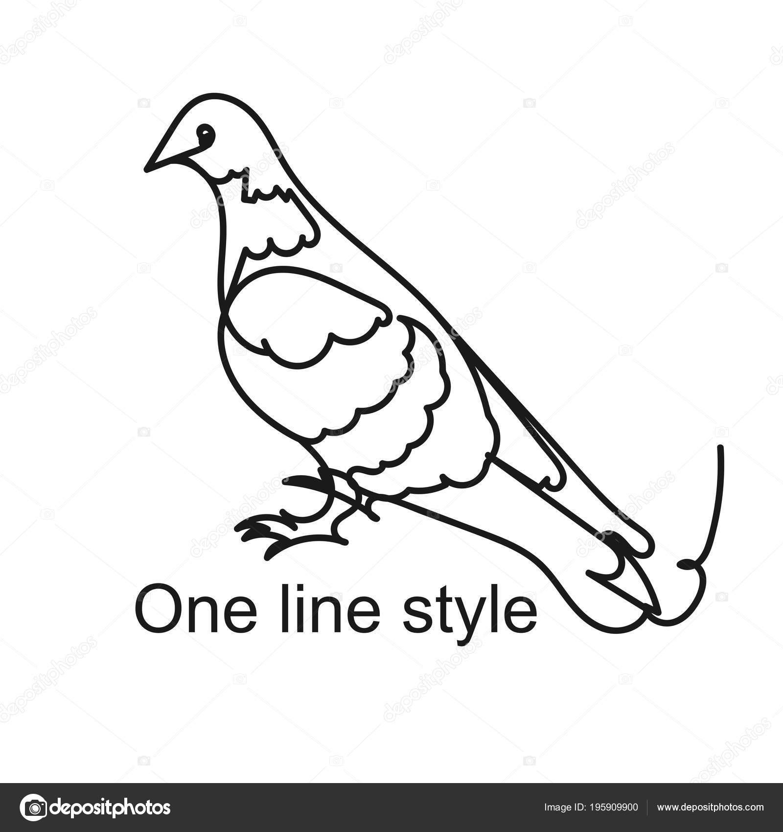 Colomba Uccello Del Mondo Realistico Schizzo Disegno A