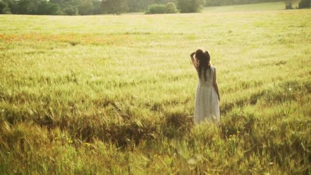 Mädchen im weiß gestreiften Kleid schreitet mit roten Mohnblumen durch das Weizenfeld. Frau mit langen Haaren spaziert durch die schöne Landschaft. Goldenes Licht in idyllischer Landschaft. Frühlingsfeld. Sommerblume. Gelassenheit