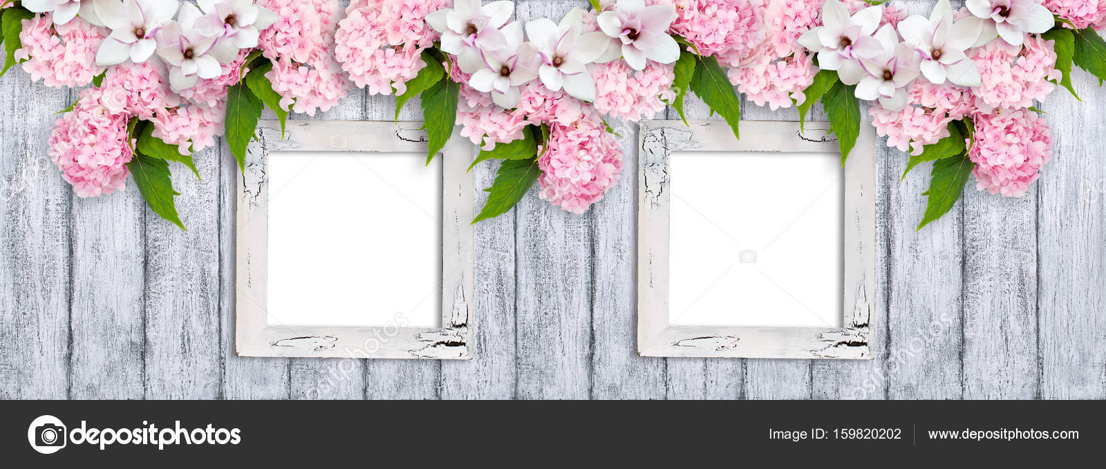 Photo frames with magnolia flowers, roses and hortensia — Stock ...