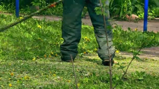 Férfi Farmer kaszálás elektromos vágó nyáron zöld fű mező