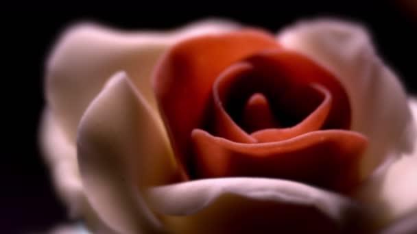 Chuť koláče / krém růže / dekorativní květina