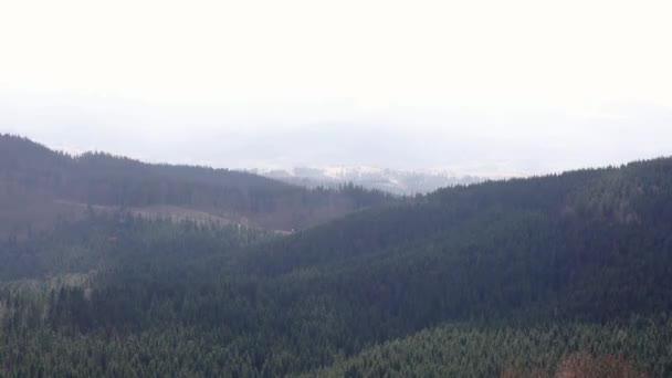 Gyönyörű tavaszi táj hegyek, fenyvesek erdő hegy völgy zöld természet táj