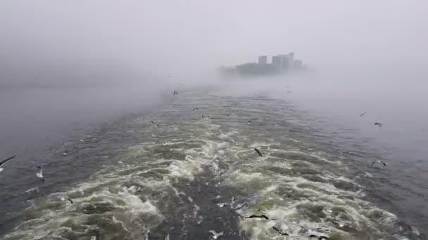 Blick auf die Wellen, die dem Schiff bei nebligem Wetter folgen. Möwen fliegen hinter dem Schiff her. Blick auf ein schwimmendes Motorboot.