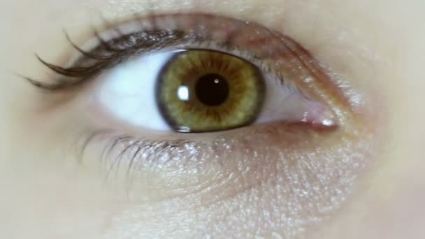 Green-brown eye of a beautiful young girl close-up. Blinking and constriction of the pupil. Macro shooting