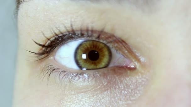 Hnědozelené oko mladé krásné dívky. Dívka se podívá do kamery a bliká v očích. Pohled zblízka