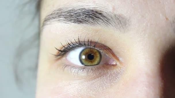 Zelené a hnědé oči krásné mladé dívky. Dívka se dívá do kamery, bliká a usmívá se. Oči zblízka.