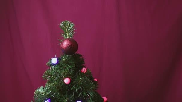 Vánoční stromek je zdoben blikajícím věncem a červenou lesklou kuličkou.Vánoční stromky s barevnými světly, hračkami a dárky. Novoroční dárky v krásném balení leží pod vánočním stromečkem zdobeným hračkami a girlandami.