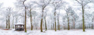 Winter landscape carpathian Slovakia, Bratislava