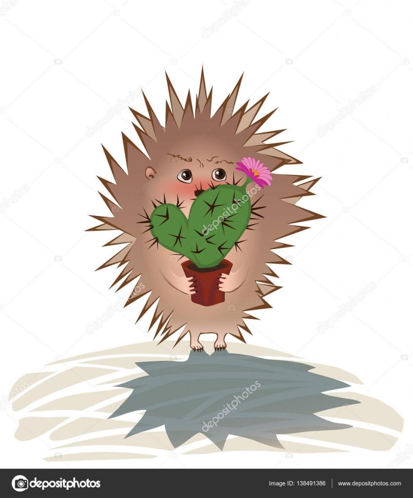картинки ежиков с кактусами довести дизайн